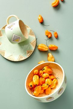 cathy_terepocki_dinnerware_mint