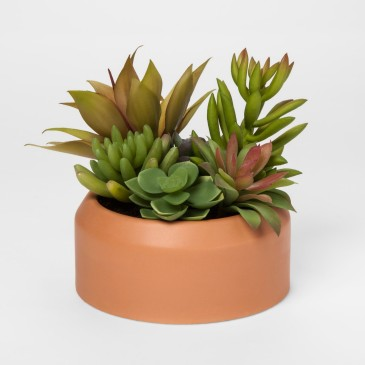 project62_faux_succulent