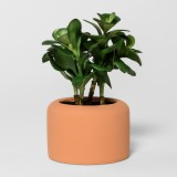 target_faux_jade_plant